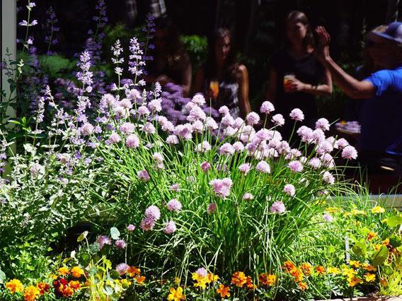 the little nell gardens